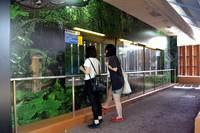 たくさん!沖縄県総合運動公園 ...
