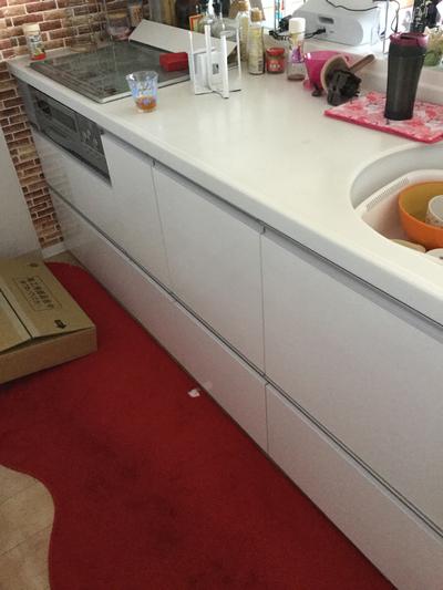 ビルトイン食洗機取付工事 宜野湾市我如古A様邸 フェアリーズヴィラマンション