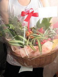 誕生日祝いの寄せ鉢