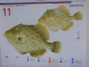 2011年11月30日:ねじろうの瀬戸内海遊記
