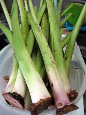 さつまいもの茎は美味しい栄養食材!食べ方や下処理・保存方法は?|Lettre du Nature